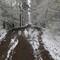 Sudden sprint snow