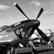 Reno Air Races16