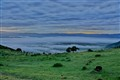 Ngorongoro Crater early morning