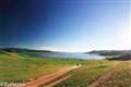 Mongolia White Lage