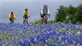 Riding through the Bluebonnets - Rt. 16 near Fredericksburg TX
