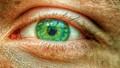 A macro shot of my wife's eye