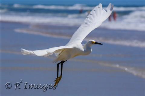 120618 - New Smyrna Beach - 67