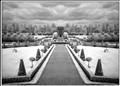 Royal Hosiptal Garden InfraredM