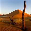 Namibian evening