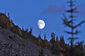 Moon over Glacier National Park