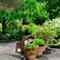 Stevenson Garden Pano #3 ©2010 Derek Dean