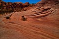 At the Valley of Fire, Overton, Nevada