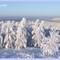 Wintertime 2010