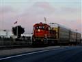 Train 1267