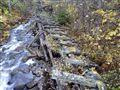 Ancient Log Flume