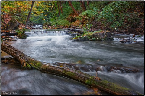 Beaverdams Creek