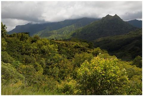 Kauai Hills 44