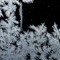 Frozen water  _MG_5368