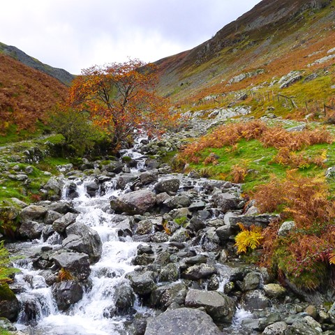 Tongue Gill Borrowdale