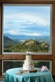 A beautifully crafted aspen-themed wedding cake behind the beautiful Rocky Mountain landscape.