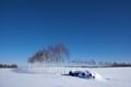 Winter Rural Field