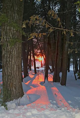 Roaring Brook Winter Sunset Trees