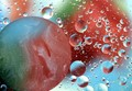 Macro of Oil and Water Bubbles