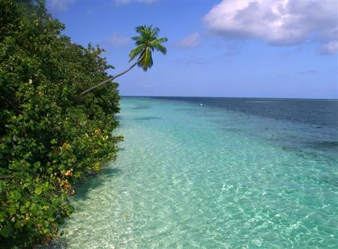 A glimpse of paradise