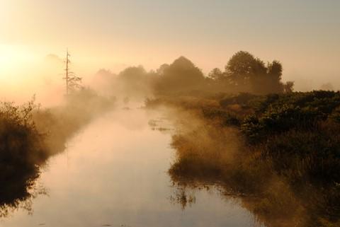 early morning Ebey Island