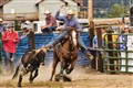 rodeo_0110
