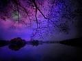 Cosmic Lights