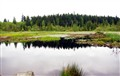 Beaverpond18
