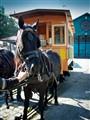 Horse tram