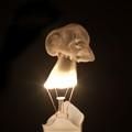 Electricity Mushroom