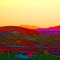 sunriseSept18001
