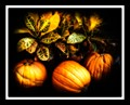 Three Pumpkins Still Life