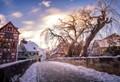 Snowy Ulm