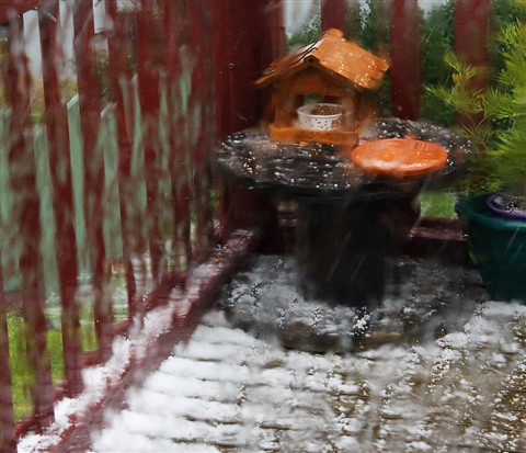 Birdhouse In A Hailstorm