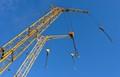 Cranes in the sky, like giraffes
