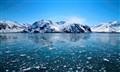 Hubbard Glaciers May 2012