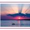 grapevine sunset-2-2