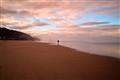 Beach-strolling Alien