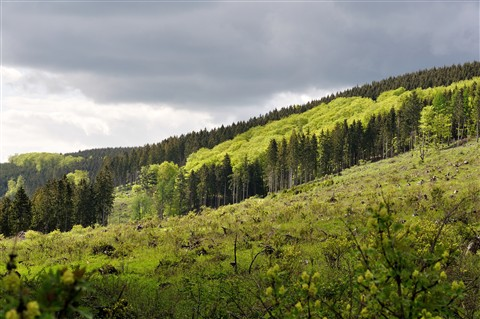 Sauerland - Painted by Nature