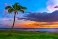 O'ahu island, Hawaii