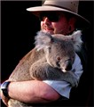 Kevin and the Koala