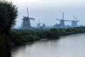 Foggy morning at Kinderdijk