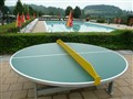 round table tennis