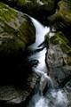 River Chute