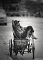 Ho Chi Minh nap
