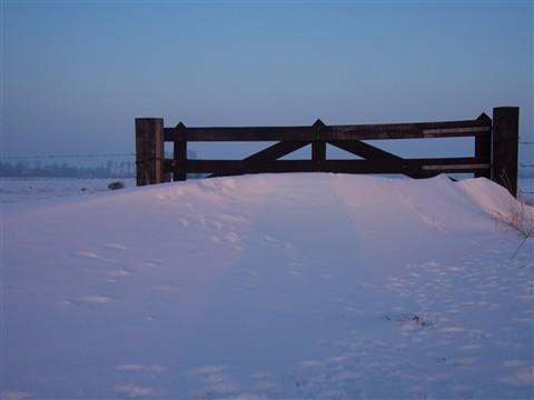 sneeuwduin en hek
