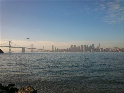View from Treasure Island