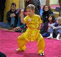 Kung Fu Examination