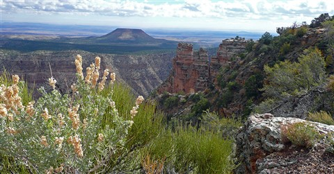 Grand Canyon Scene 8