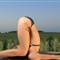 Yoga 183.NEF